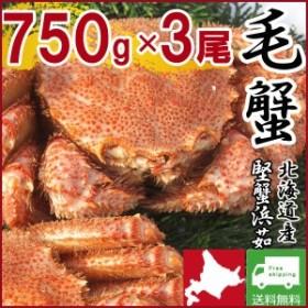 毛ガニ 毛蟹 カニ 蟹 姿  特大 北海道産 ボイル 毛がに 毛蟹 750g×3尾 かに けがに ギフト プレゼント 送料無料 お買い得 かにみそ