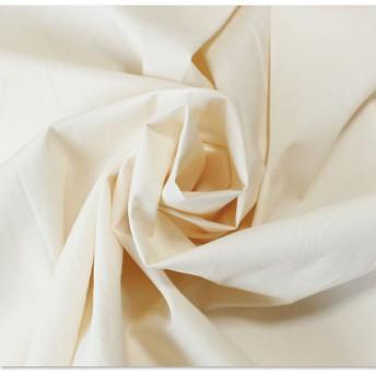 Tシャツ - Sawa a la mode 個性で差をつけるデザイントップス レディースファッション シャツ ブラウス カットソー ベージュ Beige 長袖 M L LLMサイズ Lサイズ LLサイズ 9号 11号 13号 15号 サワアラモード アラモード sawaalamo