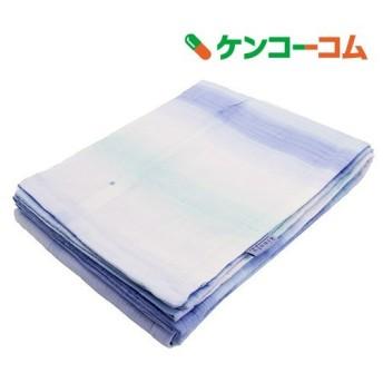 東京西川 肌掛け布団 シングル 麻混 さらさら触感 洗える 日本製 ブルー ( 1枚入 )/ 東京西川