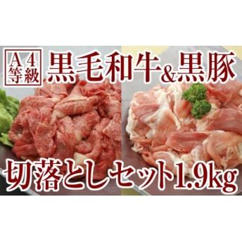 切落し特盛1.9kg!鹿児島産黒毛和牛&黒豚