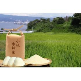 小坂水神米(5kg)