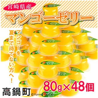 ht <宮崎県産マンゴーゼリー48個>1か月以内に順次出荷