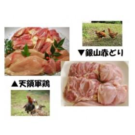 「天領軍鶏」と「銀山赤どり」食べ比べ