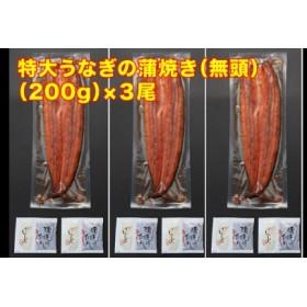 鹿児島県産特大うなぎの蒲焼き(無頭)200g×3尾
