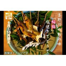 桜鮎の塩焼 7尾入《枳殻屋》