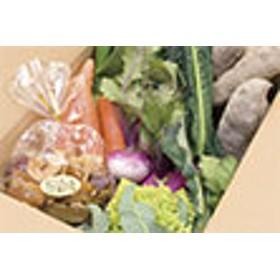生産者の想いをのせて旬のモノをお届けします! ペットのおやつ+香南市のお野菜詰合せB