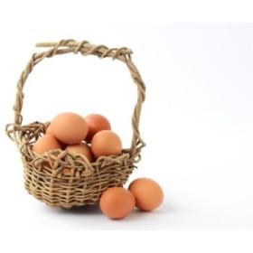甲州放牧卵の定期便 18個×10回