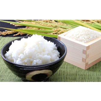 お米5kg