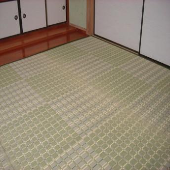 掛川織りい草カーペット 白馬 グリーン 江戸間2畳 ラグ