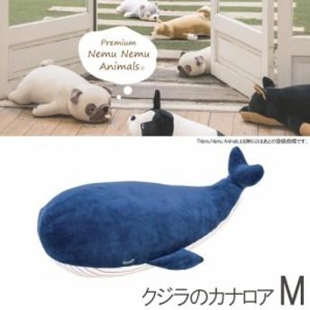 クジラ 抱き枕 クジラ ぬいぐるみ 抱き枕 くじら ぬいぐるみ おもちゃ