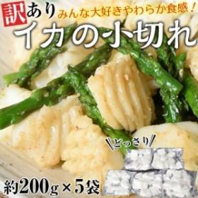 訳あり イカの小切れ アカイカ端材・切り落とし 1キロ(200g×5袋)※冷凍