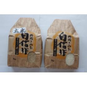 笹神村産コシヒカリ 白米3kg + 玄米3kg