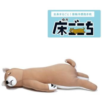 全身まるごと 接触冷感抱き枕 床ごこち 柴犬のタロ(犬)