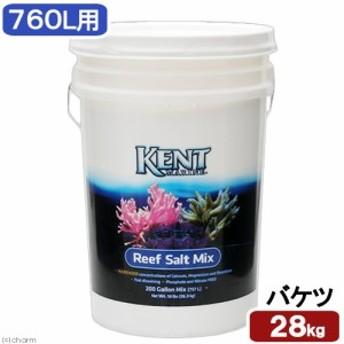 佐川急便指定 Kent Reaf Salt 200G(760L用) バケツ 同梱不可 沖縄不可