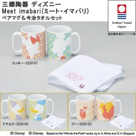 三郷陶器 ディズニー Meet imabari(ミート・イマバリ) ペアマグ&今治タオルセット