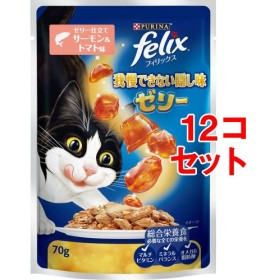 フィリックス 我慢できない隠し味ゼリー ゼリー仕立て サーモン&トマト味 (70g12コセット)