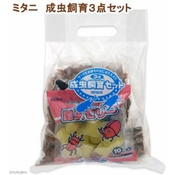 ミタニ 成虫飼育3点セット 昆虫 カブトムシ クワガタ 飼育セット