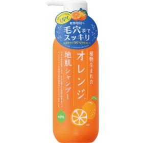 植物生まれのオレンジ地肌シャンプーN (400mL)