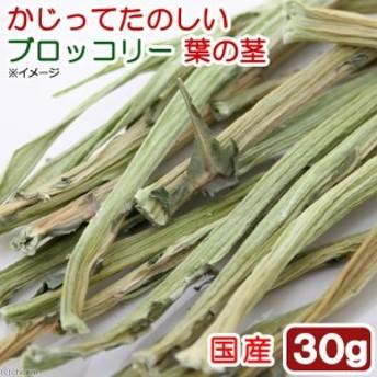 国産 かじってたのしい ブロッコリー葉の茎 30g 小動物用のおやつ 無添加 無着色 (ハムスター 餌)