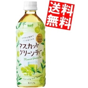 【送料無料】サーフビバレッジ マスカットグリーンティー 500mlペットボトル 24本入big_dr