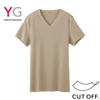 GUNZE グンゼ YG(ワイジー) VネックTシャツ(V首)(メンズ)【まとめ買い対象】 ホワイト M