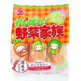岩塚製菓 がんばれ!野菜家族 51g×6入