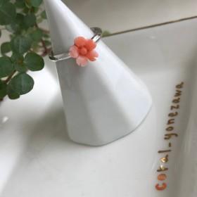 さくら・桜・サクラ・珊瑚のフリーサイズファッションリング