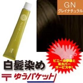 【メール便350円】ホーユー プロステップ グレイナチュラル GN4☆ 業務用 プロ用 ヘアカラー白