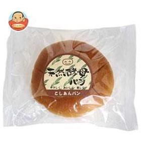 【送料無料】 天然酵母パン  こしあんパン  12個入