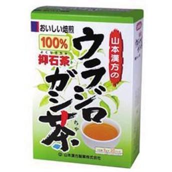 山本漢方 ウラジロガシ茶100% 5g×20袋 煮出し茶 水出し茶 ノンカフェイン 健康茶 裏白樫 ウラジロカシ 抑石茶