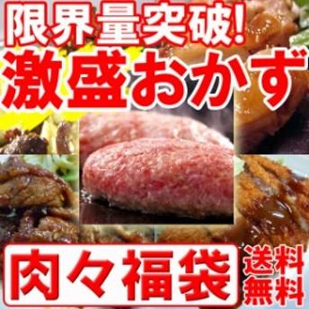 【YouTuberさなっち☆感動!】ごめんなさい↓コレが限界です…激盛肉々福袋☆人気のおかずが5種10食分(mei)