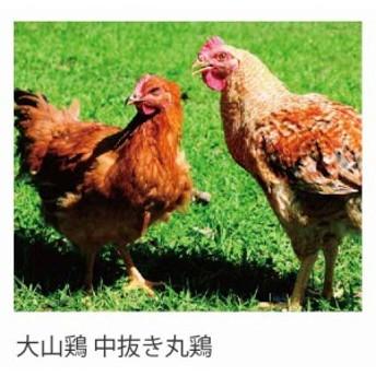 【送料無料】国産鶏肉 銘柄鶏 大山鶏 中抜き丸鶏 1羽 約1kg~1.2kg ホール 冷蔵品 業務用