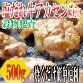 肉 塩だれ牛ホルモン500g(アカセン味付け)/ホルモン/ほるもん/牛肉/豚肉/同梱にもおすすめ/冷凍A pre