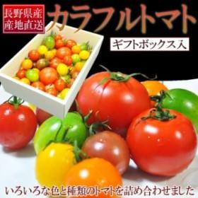 [送料無料]長野産カラフルトマト詰め合わせたっぷり1kg ギフトボックス入り!!