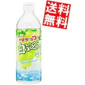 【送料無料】サンガリア つぶつぶナタデココ入り白ぶどう 500mlペットボトル 24本入[のしOK]big_dr