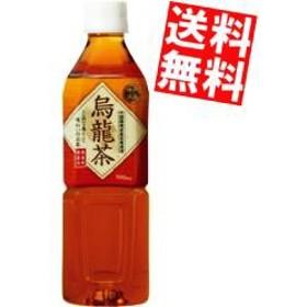 【送料無料】富永貿易 神戸茶房 烏龍茶 500mlPET 24本入[のしOK]big_dr