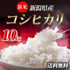 米 お米 10kg 新潟県産コシヒカリ10kg 30年産 (5kg×2袋) 送料無料 北海道・沖縄は756円の送料がかかります。