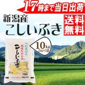 新潟県産こしいぶき10kg(2kg×5袋) 特別栽培米 令和元年産 送料無料(一部地域のぞく)