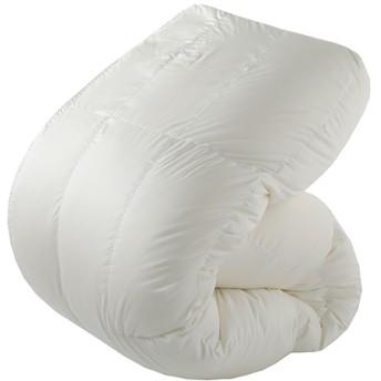 東京西川 羽毛布団 シングル カプセルドーム形状 ホワイト KA08208073W (1枚入)