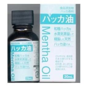 食品添加物 ハッカ油 20ml 大洋製薬 タ)シヨクテン ハツカユ 返品種別B