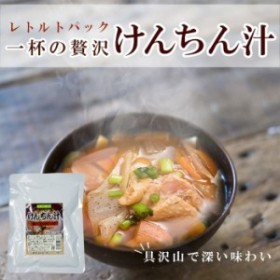 レトルト 総菜 けんちん汁250g 醤油味 具だくさん 長期1年保存 レトルトみそ汁