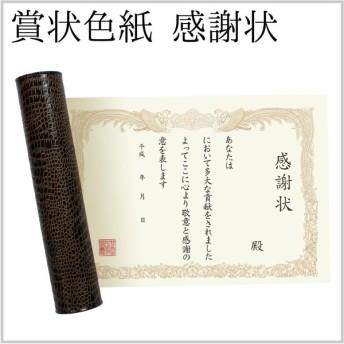 賞状色紙 感謝状 AR0819009