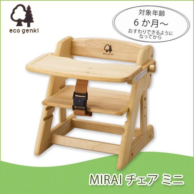 エコ元気 MIRAIチェア ミニ 6か月から FG001PN100OIL