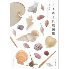 【単行本】 寺本沙也加 / ときめく貝殻図鑑 最近「波の音」と暮らしはじめました。 ときめく図鑑 Book for Discovery
