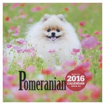 新品本/カレンダー '16 ポメラニアン