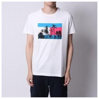 トミーヒルフィガー TOMMY HILFIGER フラッグプリントTシャツ (ホワイト)