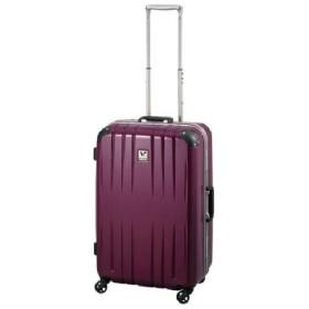 【World Traveler】スクォーク スーツケース【機内持込みサイズ】【1-2泊対応】 パープル