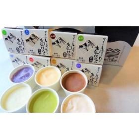 搾りたて生乳仕込みの濃厚ミルクアイス 12個セット