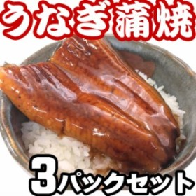 訳あり 激安 うなぎの蒲焼 3パックセット(100g×3) うな丼 3人前 便利なレトルトパック 中国産うなぎ
