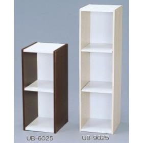 スペースユニット 2段 UB-6025(W250×D290×H600)(送料無料)(木製ラック、シェルフ、本棚、収納家具)